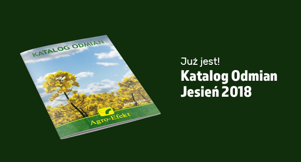 Katalgodmian2018j