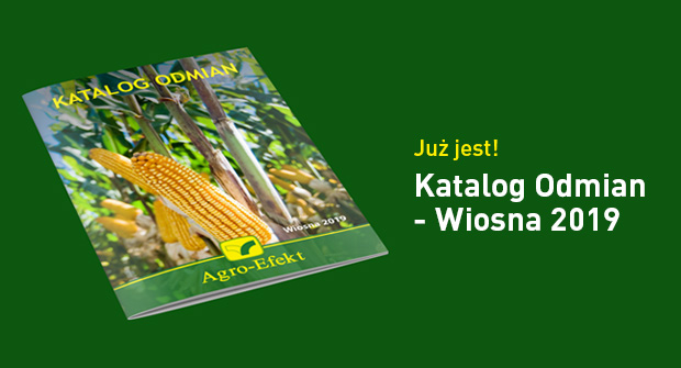 KatalogOdmianWiosna2019-strona